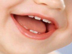Порядок и схема роста молочных зубов у детей