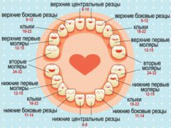 Признаки и симптомы прорезывания зубов у грудничка